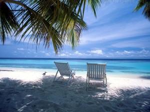 forex beach start
